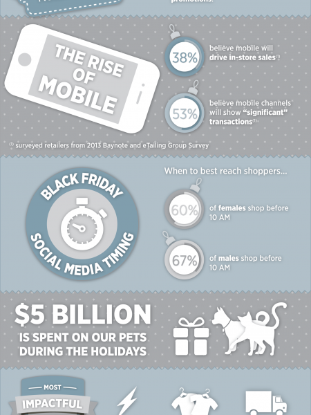 2013 Holiday Shopping Season Infographic