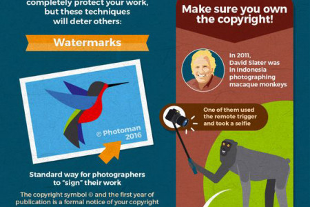 Privacy and Copyright Photographers Infographic