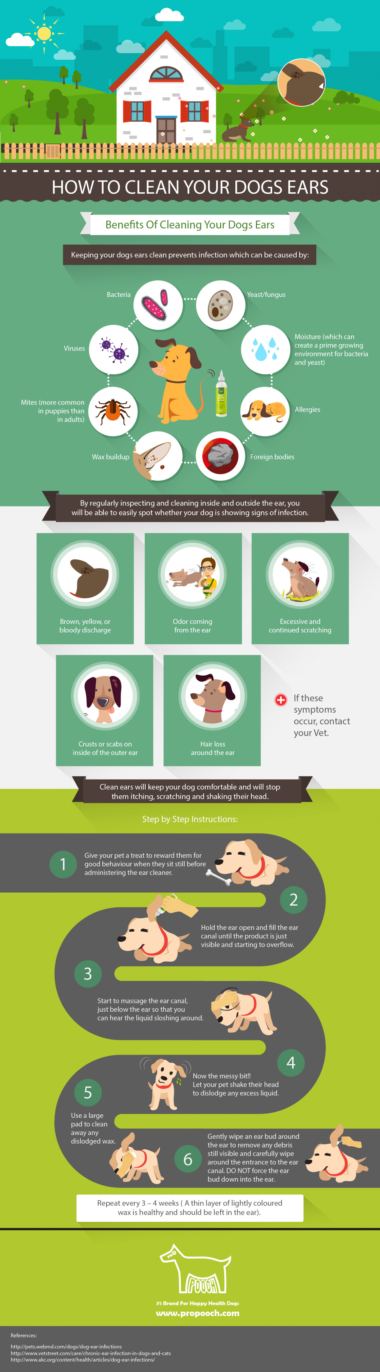 Pro Pooch How To Clean Your Dogs Ears Infographic