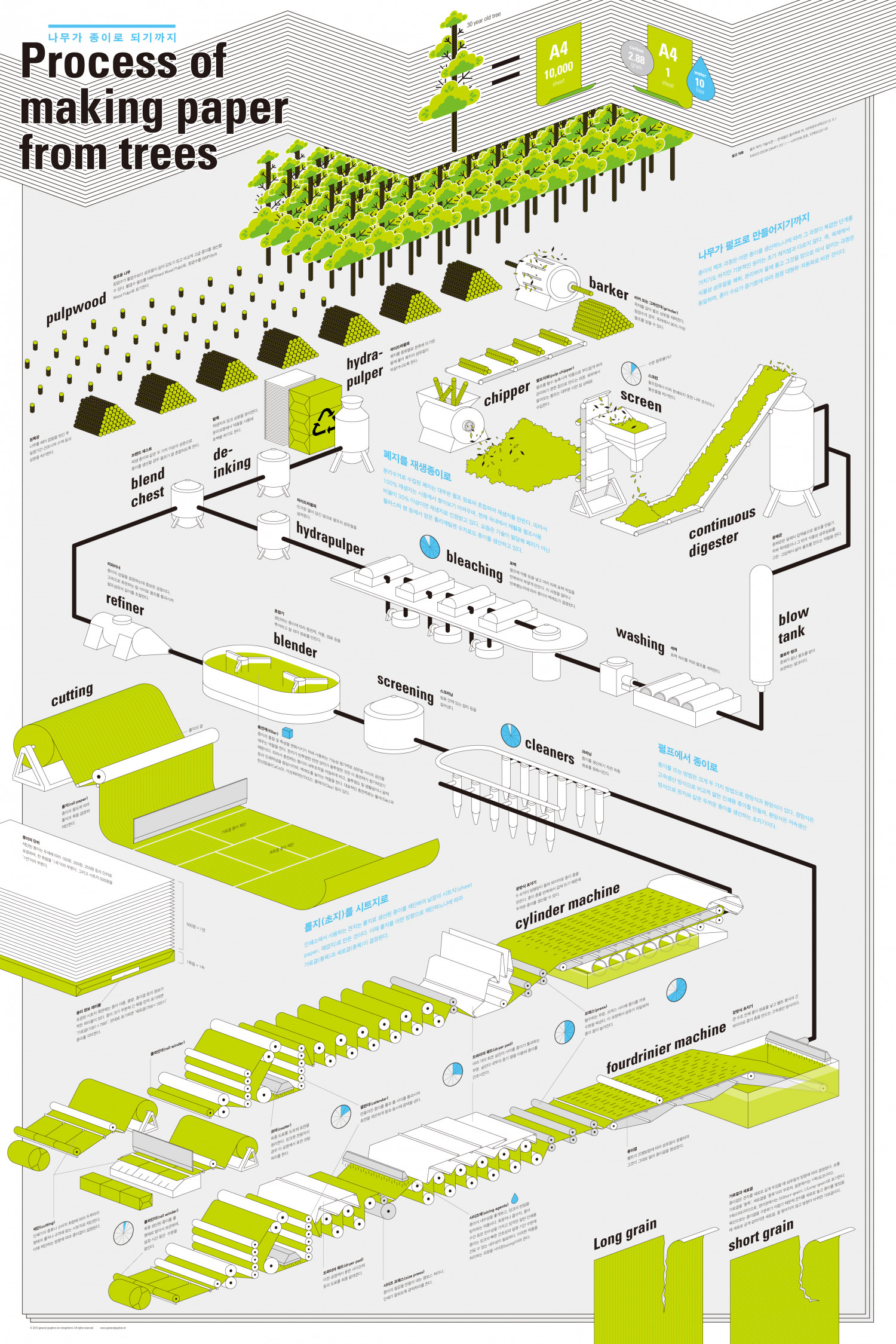 Process of making paper from trees Infographic