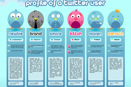 Profile of a twitter user Infographic