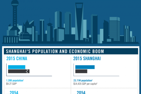 Profile Of The Shopping Habits Of A Shanghai Family In 2054 Infographic