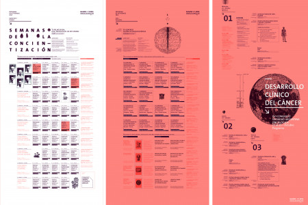Programmatic Posters - Marie Curie Hospital Infographic