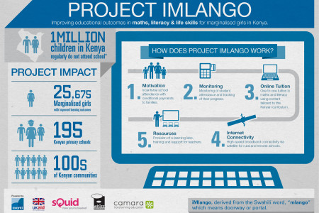 Project iMlango Infographic