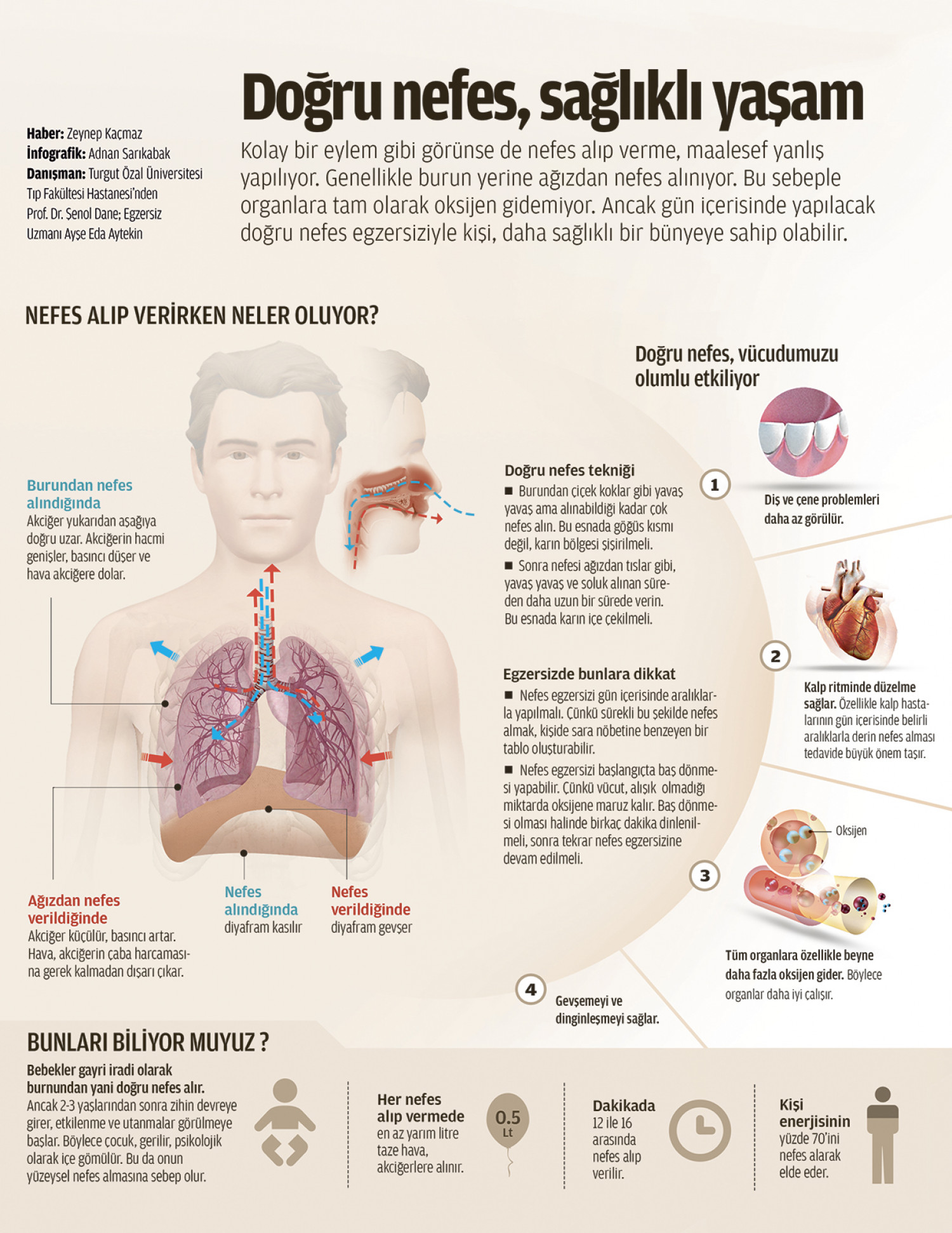 Proper breathing Infographic