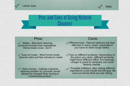 Pros and Cons of Using Natural Window Cleaners Infographic