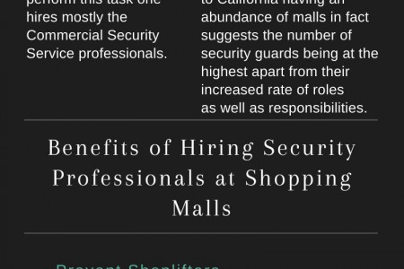 Pros of Hiring Security Professionals at Shopping Center Infographic