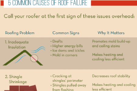 Protect Your Roof! Infographic