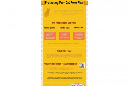 Protecting Your Cat from Fleas Infographic