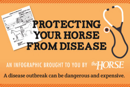 Protecting Your Horse From Disease Infographic
