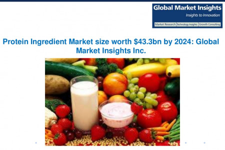 Protein Ingredient Market size to reach $43.3bn by 2024 Infographic
