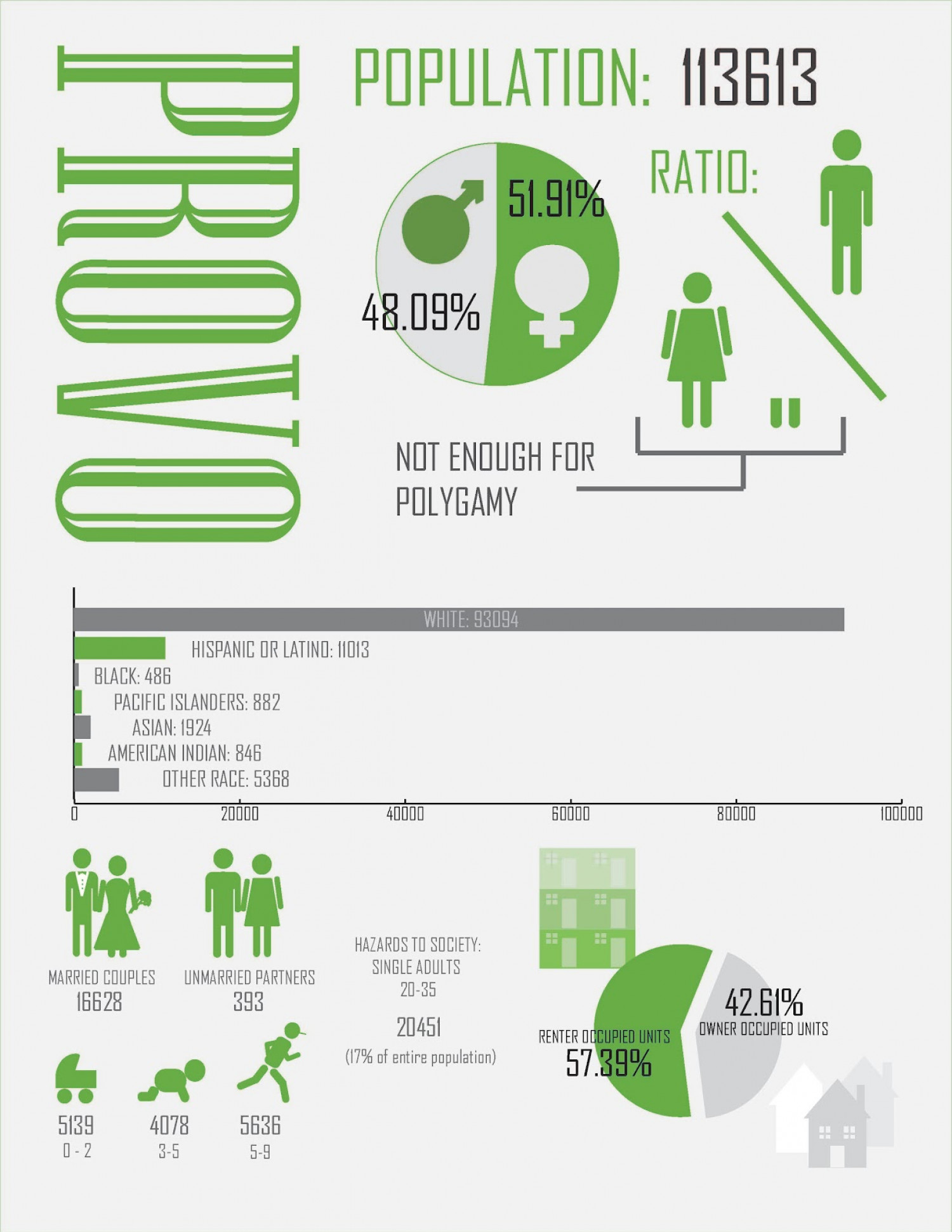 Provo: Demographics Infographic