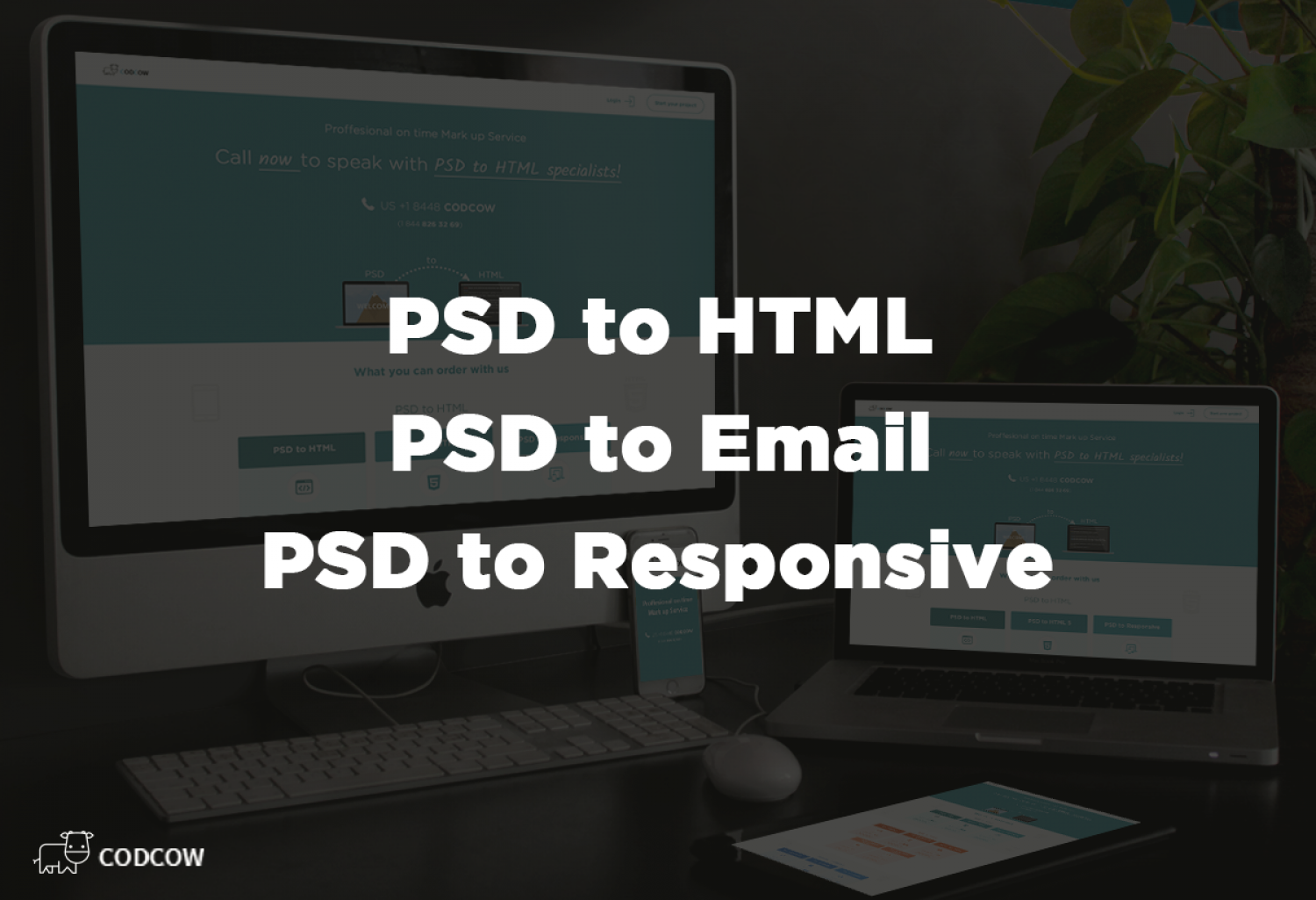 PSD TO HTML by Codcow.com Infographic