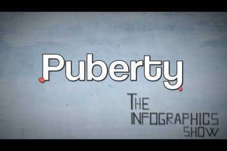 Puberty Infographic