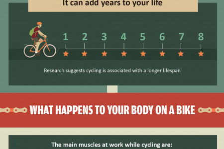 Put the Pedal to the Pavement: Your Body While Biking Infographic