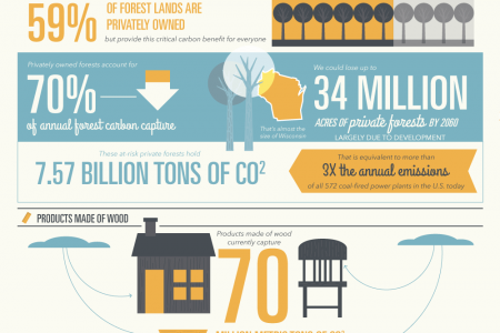 Putting Forests to Work Infographic