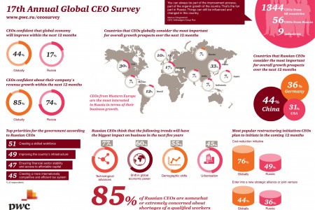 17th Annual Global CEO Survey Infographic