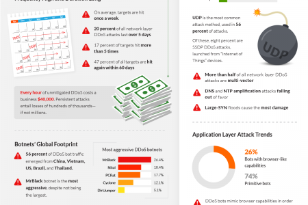 Q2 2015 Global DDoS Threat Landscape Infographic