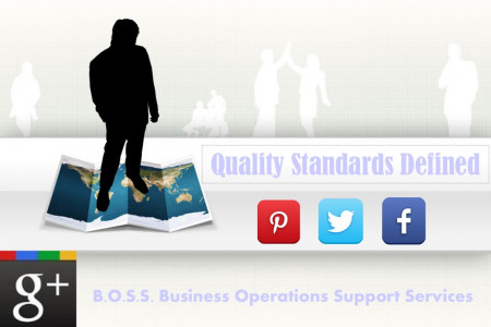 Quality Standards Defined Infographic