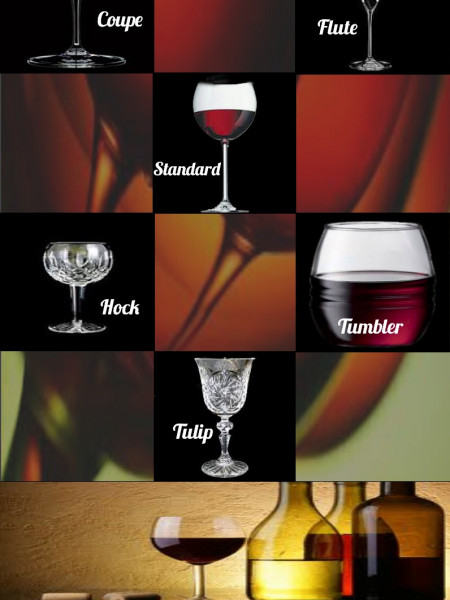 Quick Look at the Types of Wine Glasses Infographic