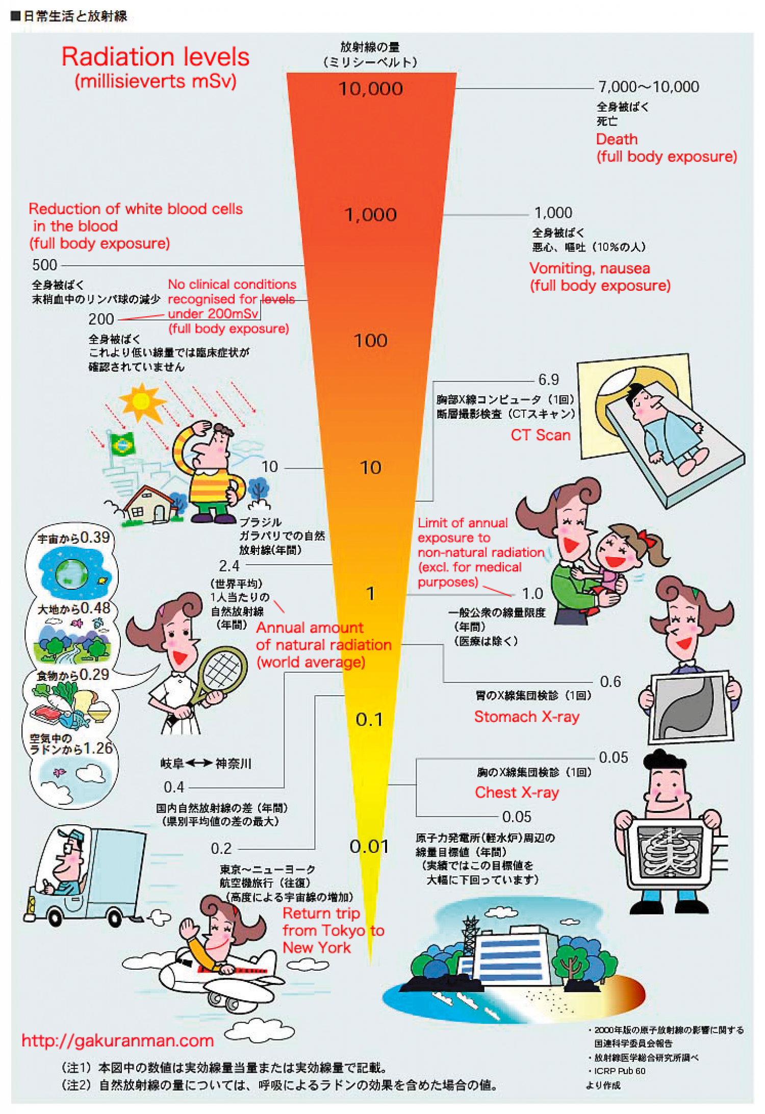 Radiation Levels and the Body Infographic
