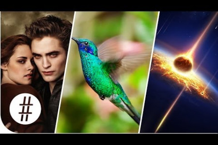 Random Numbers: Twilight, Hummingbirds & Death By Asteroid  Infographic
