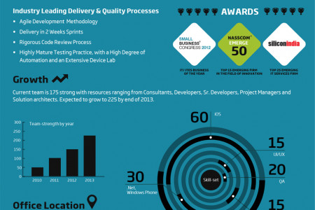 RapidValue Solutions - Corporate Infographic Infographic