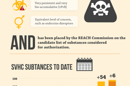 REACH: Compliance and Growth in the Electronics Industry in 2013	 Infographic