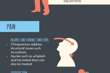 Reasons To Go See a Chiropractor Infographic