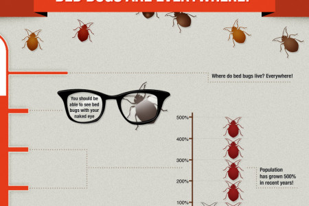Reasons to Treat Bed Bugs with Heat Infographic