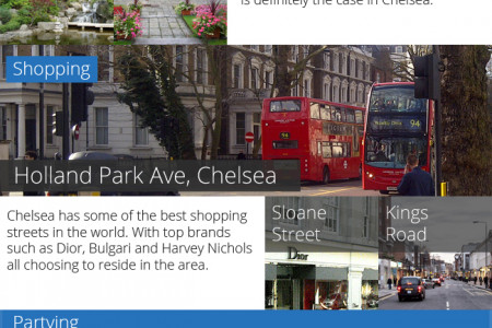 Reasons To Visit Chelsea Infographic