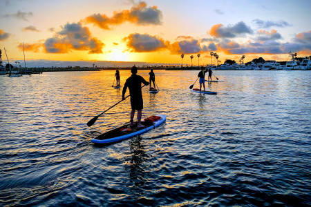 Reasons You Should Try Paddle Boarding Infographic
