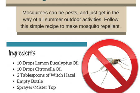 Recipe: Home Made Mosquito Repellent Infographic
