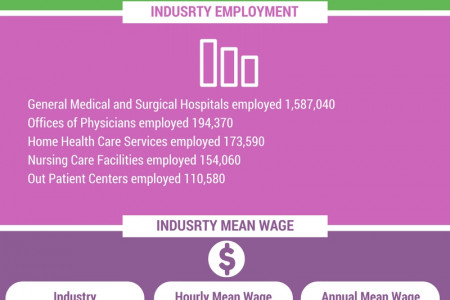 Registered Nurse Employment and Wages Guide Infographic
