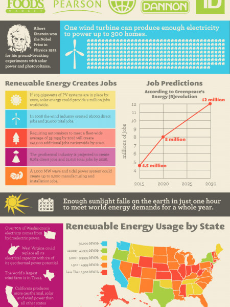 Renewable Energy Infographic Infographic
