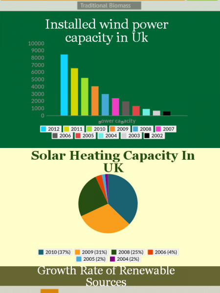 Type of Renewable Energy Infographic