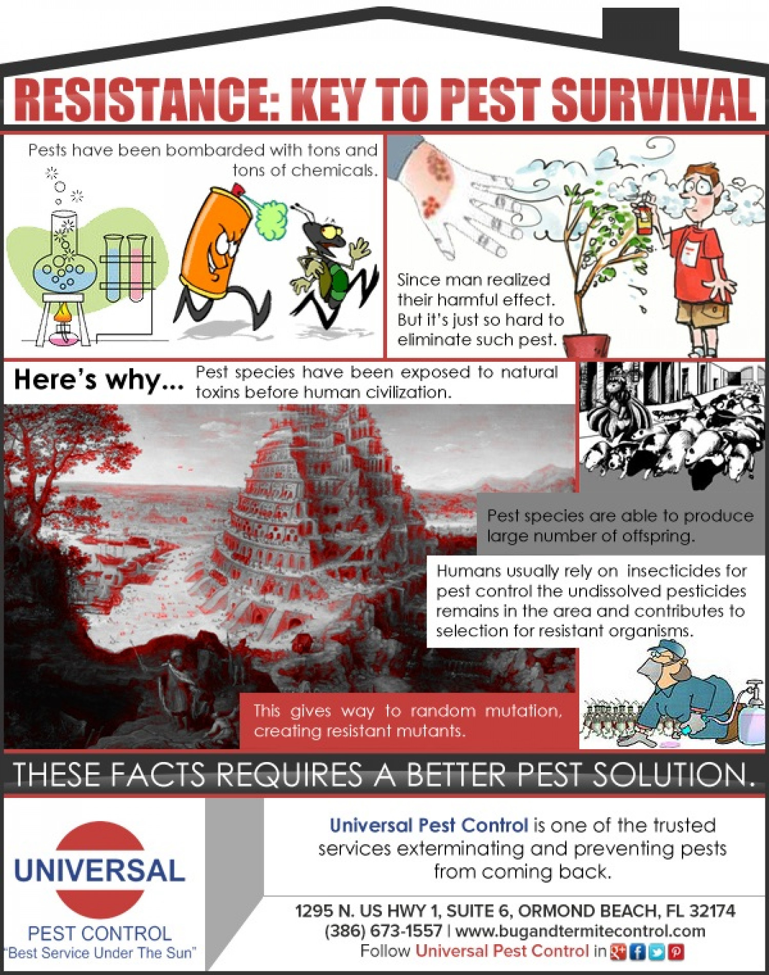 Resistance: Key to Pest Survival Infographic