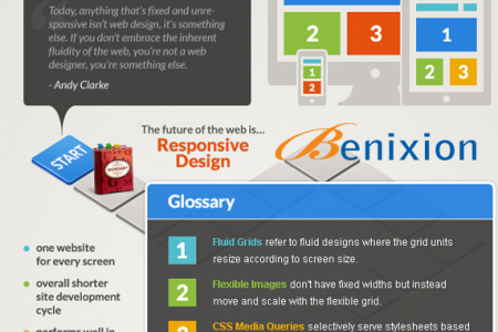 Responsive website Development Company in Delhi Infographic