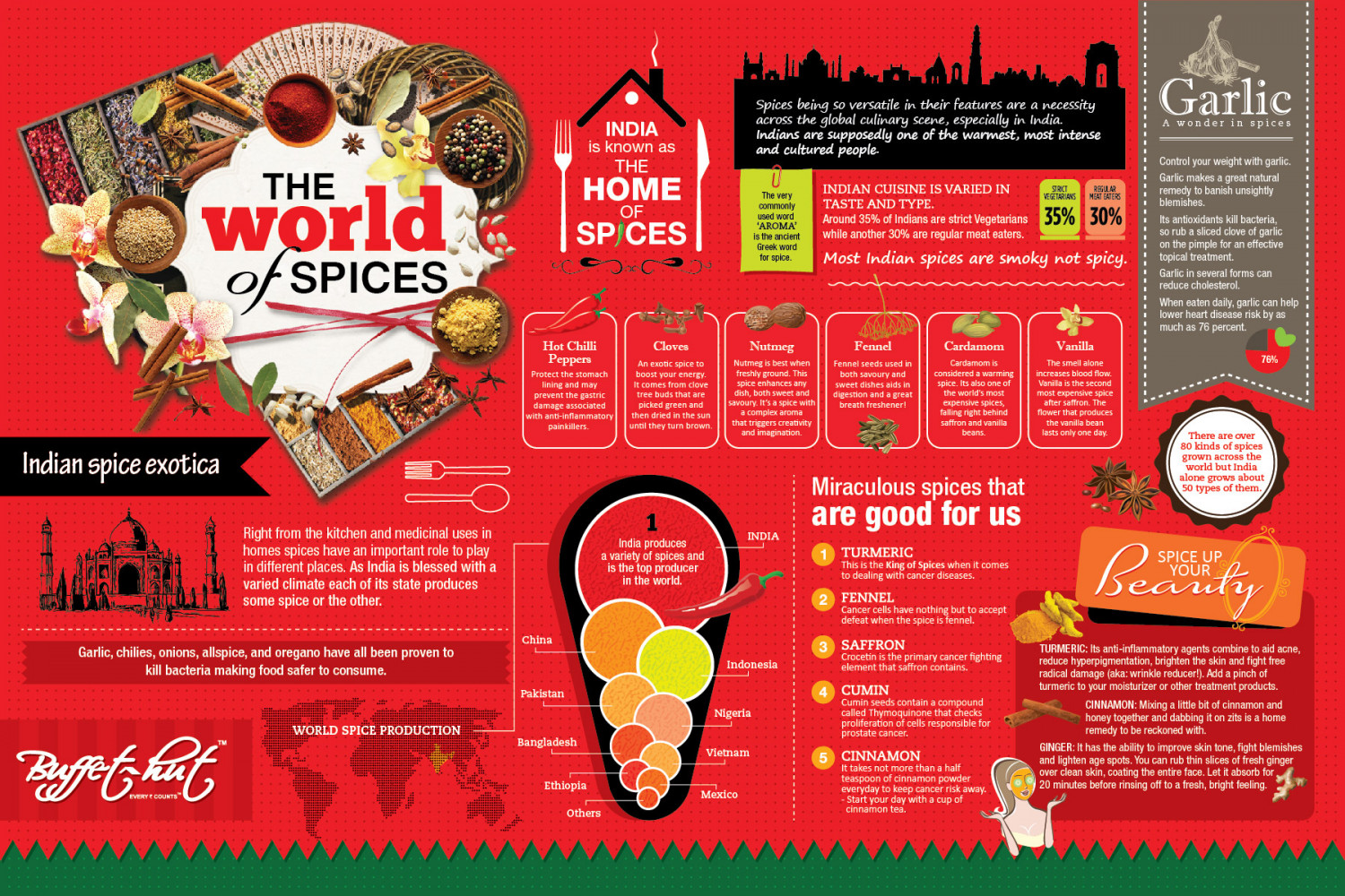 The World of Spices Infographic