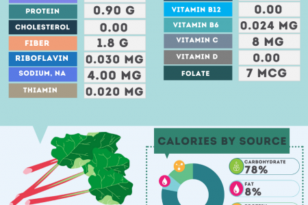 Rhubarb nutrition facts Infographic