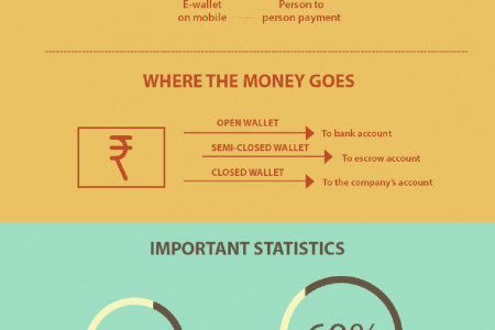 Rise of Digital Wallets Infographic