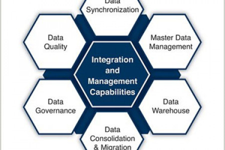 Risk Mitigation with Data Management Solutions Infographic