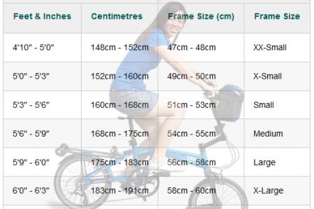 Road bike size chart Infographic