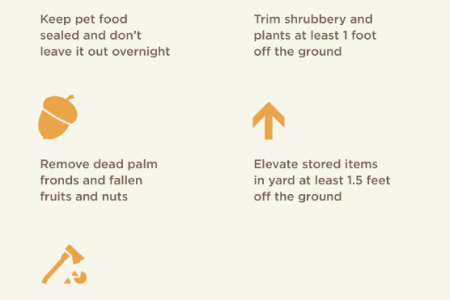 Rodents in your Residence: Tips for Rodent Prevention  Infographic