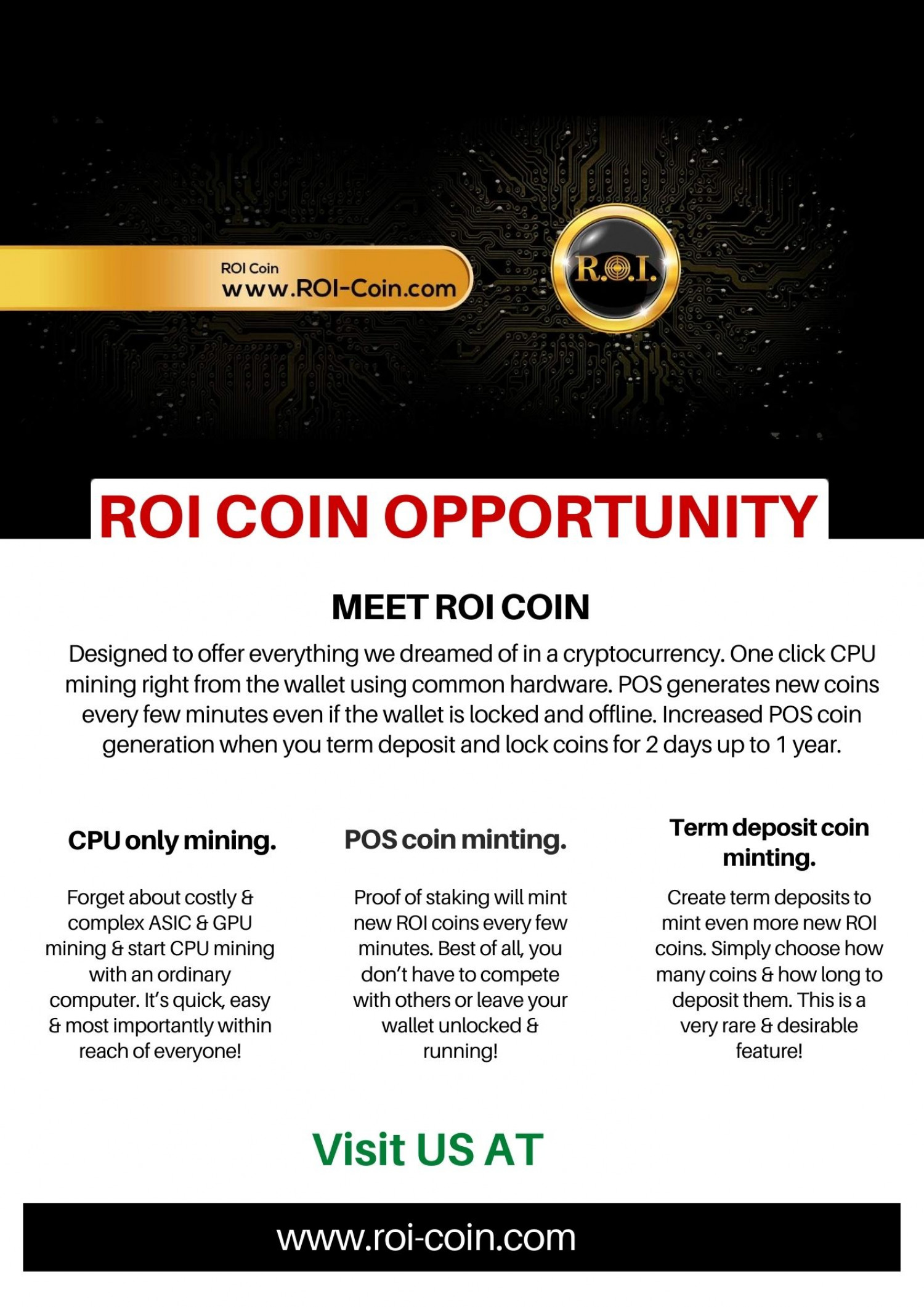 ROI Coin Opportunity Infographic