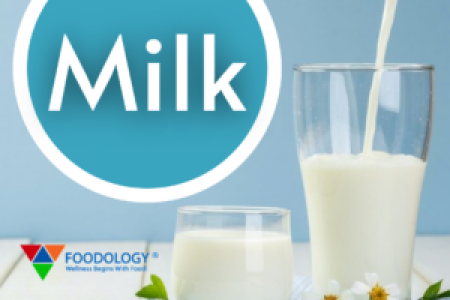 Role of Calcium Rich Foods in Weight Loss | Foodology Inc Infographic