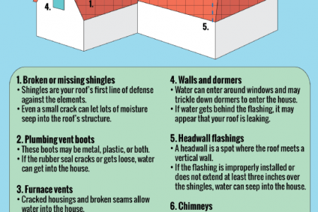 Roofing 101: Protecting Your Home from Damaging Leaks  Infographic