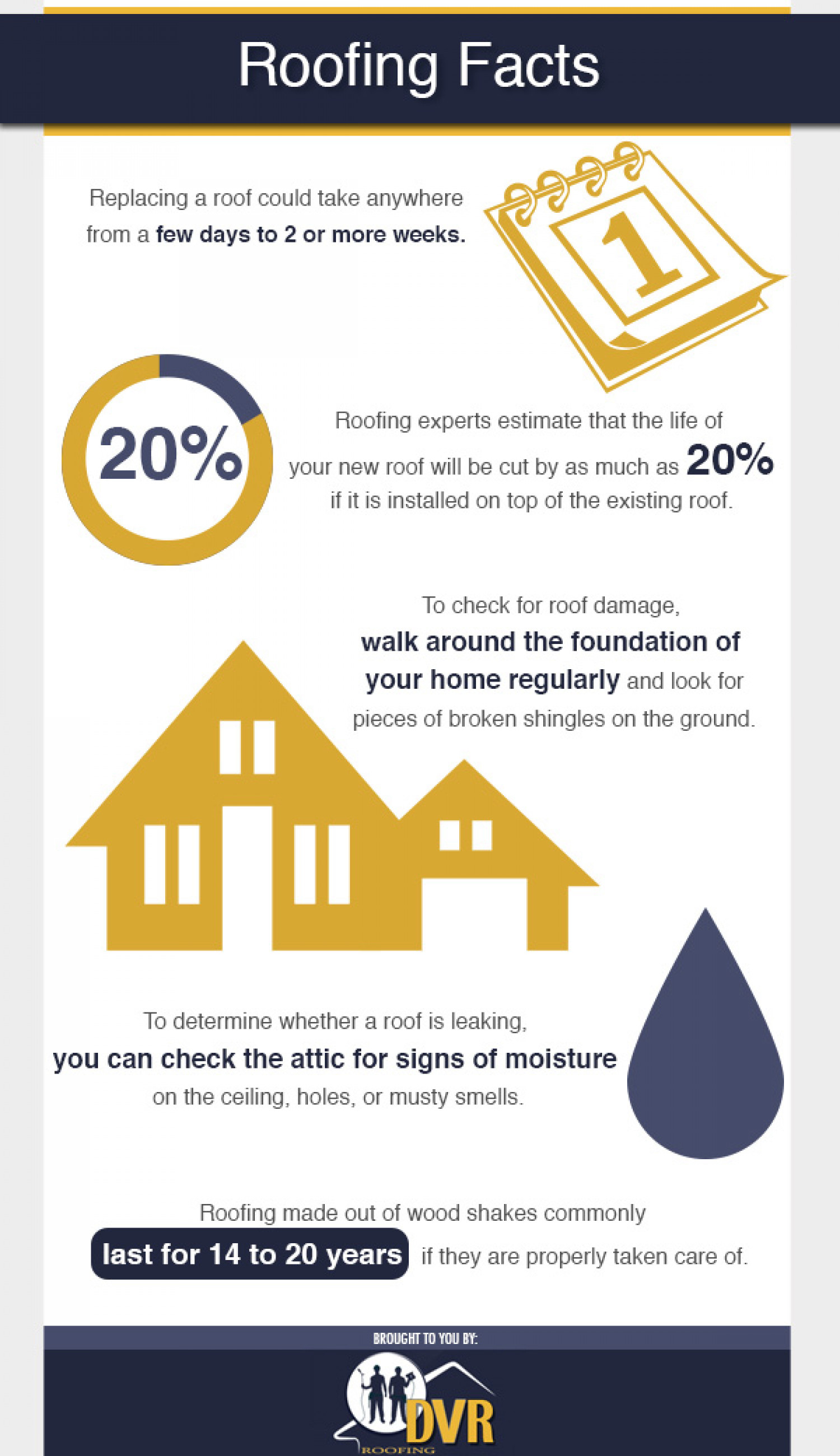 Roofing Facts Infographic