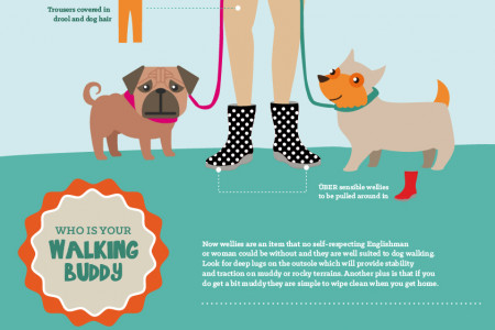 Ruff guide to walking your dog in wellies Infographic