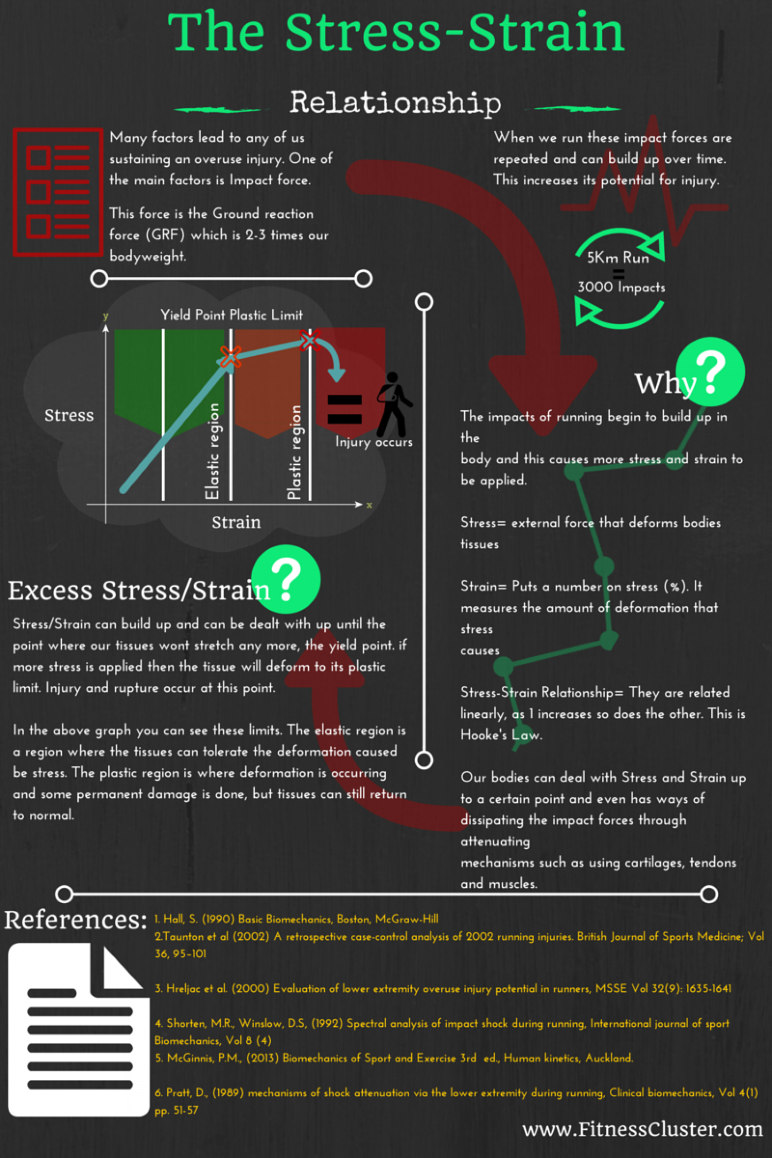 Running and the Stress Strain Relationship Infographic
